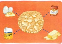 Cookie Science: Everything About Baking Cookies