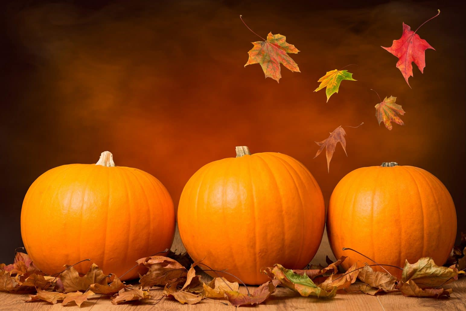 quick easy vegan baking fall pumpkin pecan cookie recipe - Fall Pumpkins