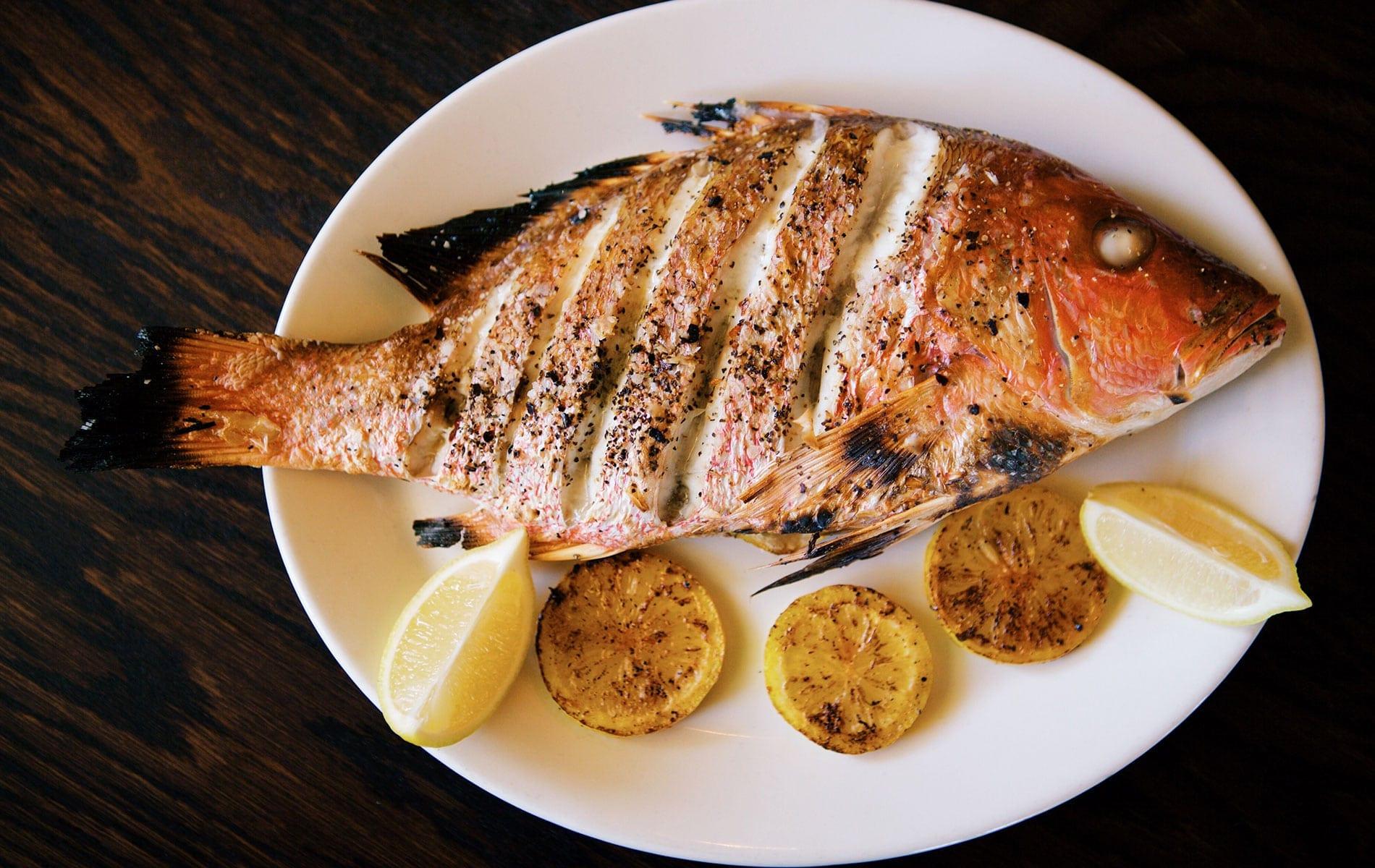 Best Redfish Recipes